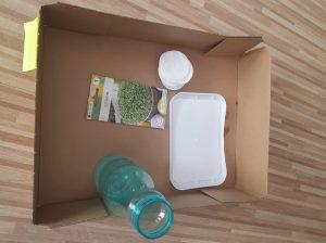 W środku pudełka są butelka z wodą, tacka, nasiona rzeżuchy w saszetce oraz wata.