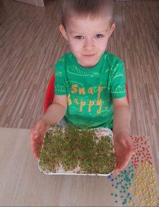 Kilkuletni chłopiec w zielonej koszulce siedzi na krześle przy stoliku. Chłopiec trzyma w rękach przed sobą tackę z wyrośniętą rzeżuchą.